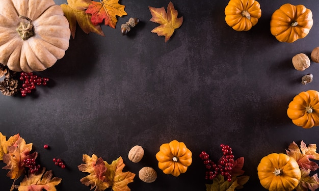 Autumn composition pumpkin cotton flowers and autumn leaves on dark stone