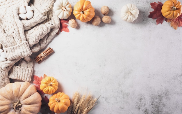 Autumn composition pumpkin cotton flowers autumn leaves and sweater on stone background