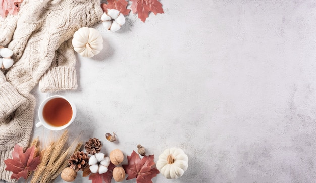 Autumn composition pumpkin cotton flowers autumn leaves and sweater on stone