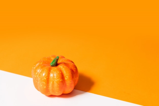 Autumn composition. pumpkin on orange background.