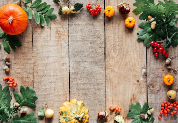 Autumn composition pumpkins acorns autumn leaves and rowan berries on wooden background