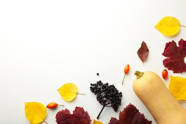 秋の構成。カボチャ、パステルグレーの背景に乾燥した葉。秋、秋、ハロウィーンのコンセプト。フラットレイ、上面図、正方形、コピースペース