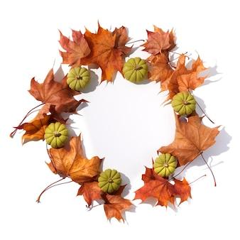 가 구성입니다. 흰색 바탕에 말린 잎과 호박으로 만든 둥근 프레임입니다. 평면도. 플랫 레이.