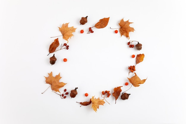Autumn composition. round frame from dried leaves on white background. top view. flat lay.