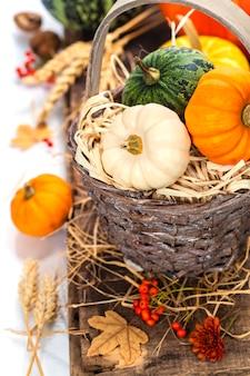 Осенняя композиция. концепция дня благодарения