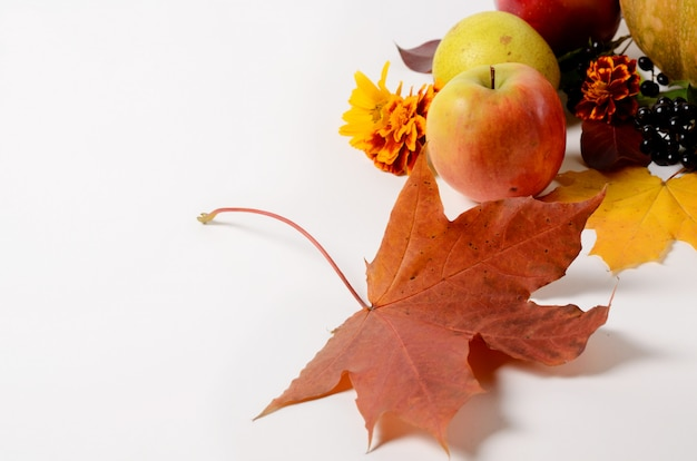 Autumn composition of vegetables and fruits, leaves, apples, pears on a white background.