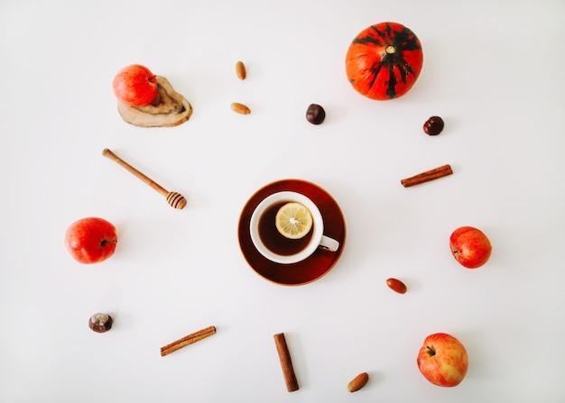 白い背景の上面図に茶りんごカボチャとシナモンのカップと秋の構成