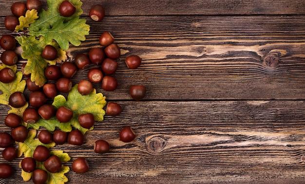 茶色の織り目加工の木にどんぐりとオークの葉を使った秋の構成