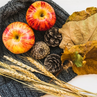 Autumn composition with apples and hat