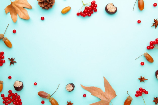 Autumn composition with copy space. autumn leaves and corn, pine cone, anise star. flat lay, top view, copy space