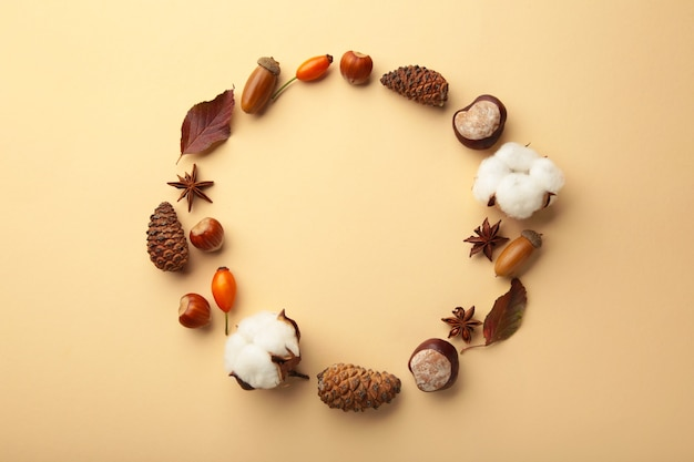 Autumn composition with dried flower and leaves on beige background. top view