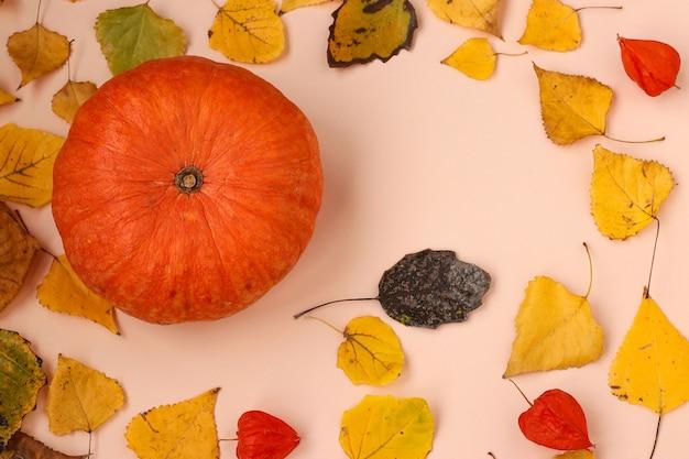 단풍과 호박으로 만든 프레임이 있는 가을 구성, 가로 방향, 위쪽 보기, 복사 공간