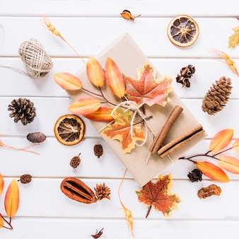 Autumn composition with gift on white background