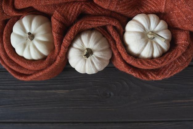 ウールのニットブランケットと白いカボチャの秋の構成。居心地の良い秋または冬の背景