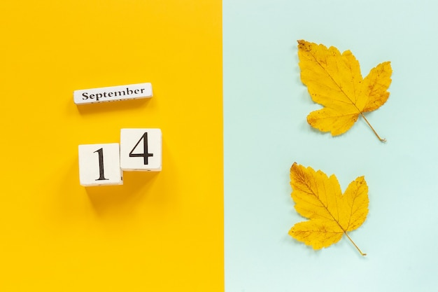Autumn composition. wooden calendar september 14 and yellow autumn leaves on yellow blue background. top view flat lay mockup concept hello september.