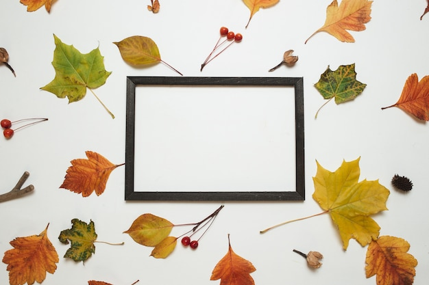 Autumn composition. wooden photo frame with fresh autumn leaves on white background