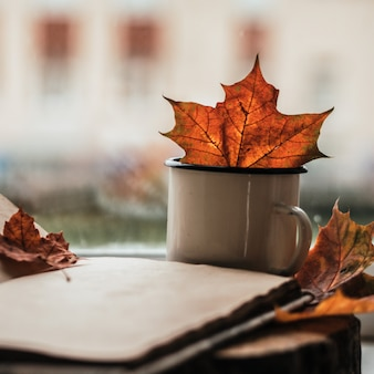 Autumn composition. yellow and golden fall leaf