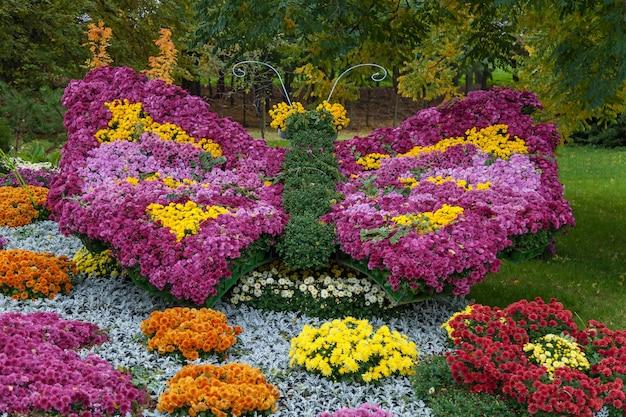 Осенние композиции из хризантем, осенняя выставка хризантем в киеве.