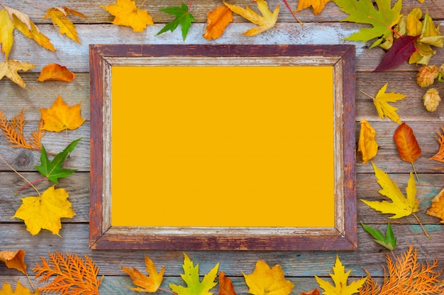 Autumn compositions of bright autumn leaves and picture frame with yellow copy space