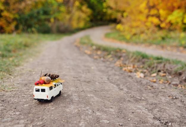 가을 개념-도토리, 마가 목 열매, 노란 잎과 범프의 지붕에서 운전하는 장난감 자동차