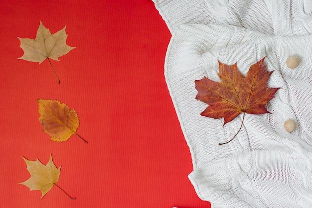 Осенняя концепция опавшие осенние листья лежат на белом вязаном одеяле