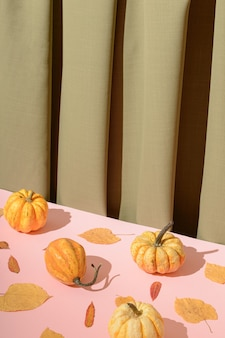 葉とカボチャの秋のコンセプト。緑のカーテンとピンクのテーブルで作られた背景。レトロなスタイルの秋の日