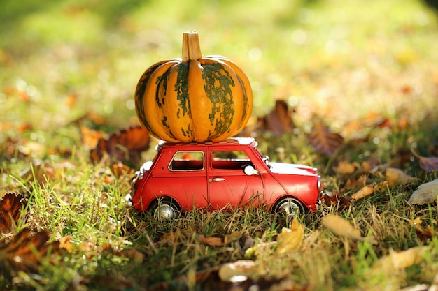 Autumn concept. thanksgiving. red decorative car carries an pumpkin in a green lawn with autumn leaves. pumpkin delivery.