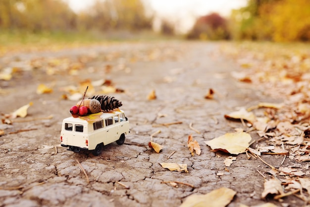 Autumn concept - a toy car driven on the roof of acorns, rowan berries, yellow leaf and a bump
