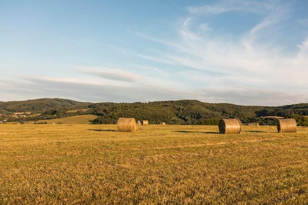 Autumn concept with big rolls of hays