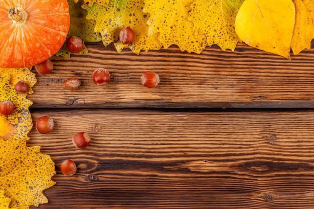 Autumn concept with copyspace: frame of pumpkin with leaves and hazelnuts