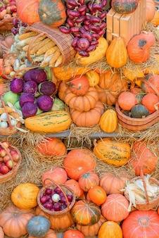 Осенняя концепция с сезонными фруктами и овощами. осенний фон сезонных овощей на сене. вертикальное фото