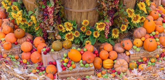 Осенняя концепция с сезонными фруктами и овощами. осенний фон сезонных овощей на сене.