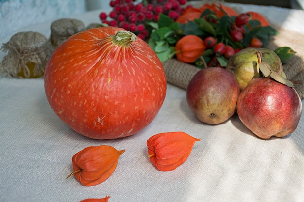 Autumn concept with seasonal fruits and vegetables.