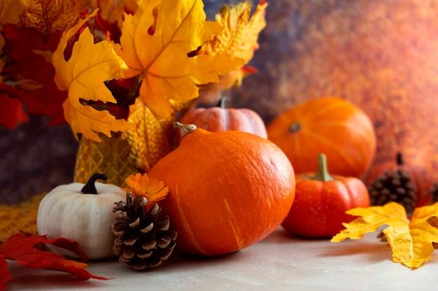 カボチャと色とりどりの葉、松ぼっくりと秋のcopmosition。