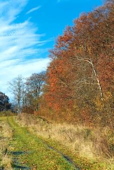 Осенняя проселочная дорога и солнечный горный лес