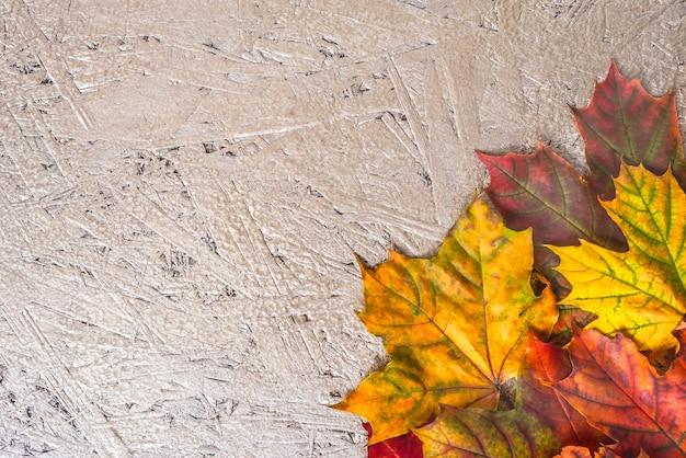秋の創造的な組成物。