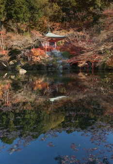 Autumn daigoji temple