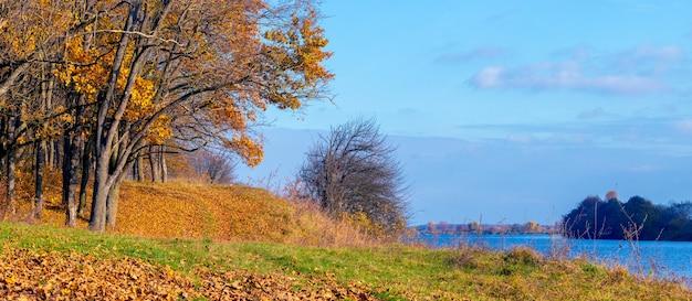 晴天の川沿いの森の秋の日。秋の風景