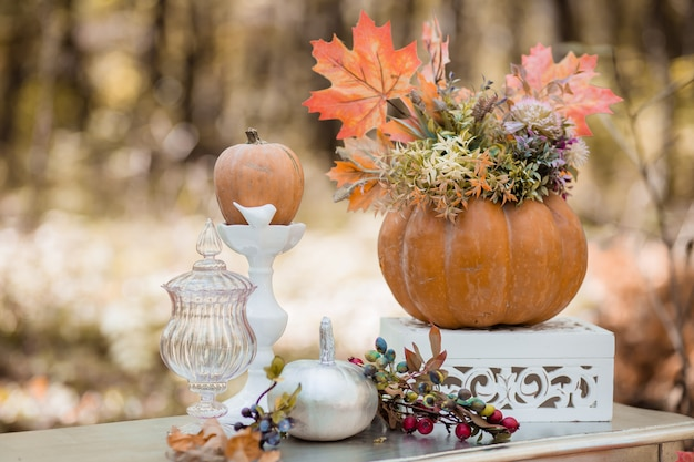 Autumn decor in the forest