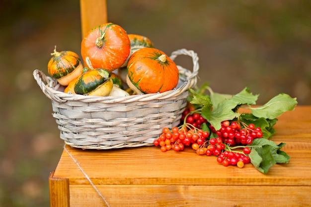 秋の装飾:カボチャ、ベリー、屋外の葉、感謝祭、ハロウィーン