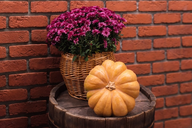 Autumn decor with pumpkin and flowers on old wooden barrel. harvest and garden outdoor decorations for halloween, thanksgiving, autumn season still life. fall styled composition.