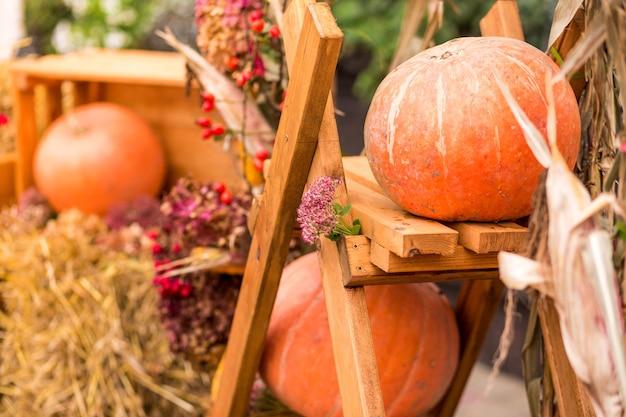 Осенний декор с различными тыквами, осенними овощами и цветами. урожай и украшение сада. фото