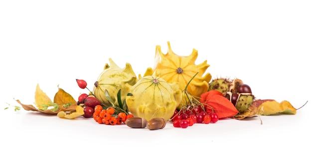 乾燥した葉、カボチャなどを配置した秋の装飾、白、ワイドフォーマットで分離