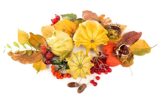 乾燥した葉、カボチャなどで配置された秋の装飾、白、ワイドフォーマットで分離