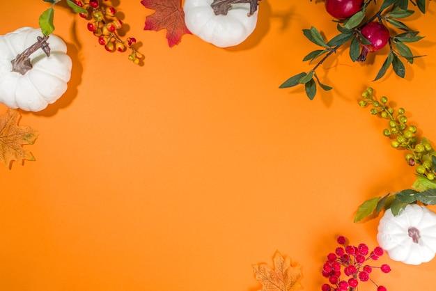 Осенний фон украшения с тыквами, осенними ягодами, листьями, цветами, на ярко-оранжевом фоне вид сверху плоская копия космической рамки