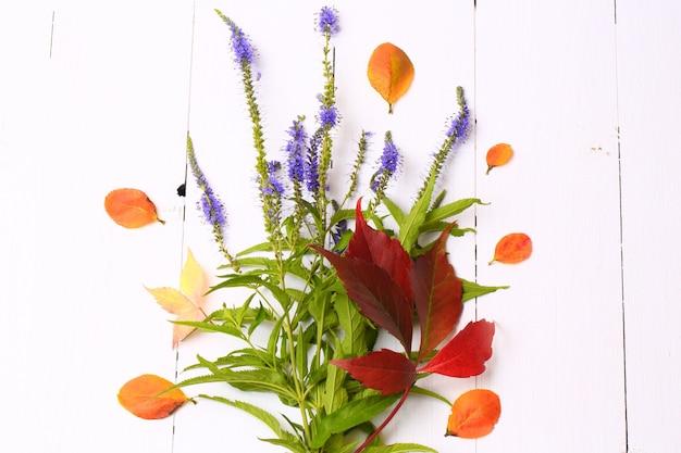上から見た白い木製の背景にベリーと花の秋の装飾
