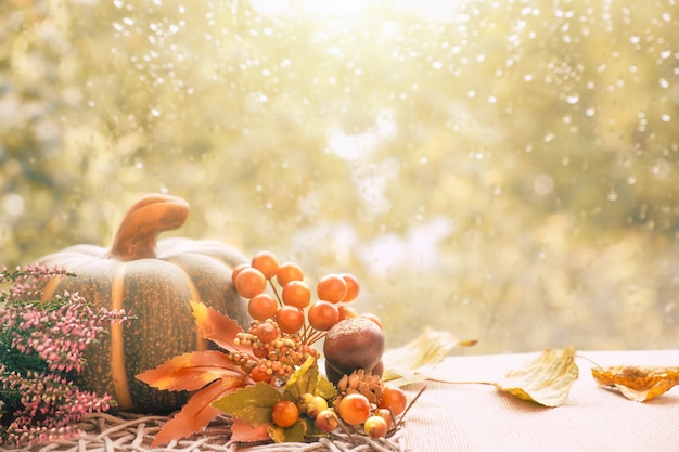 Autumn decorations on a window board on a rainy day, space