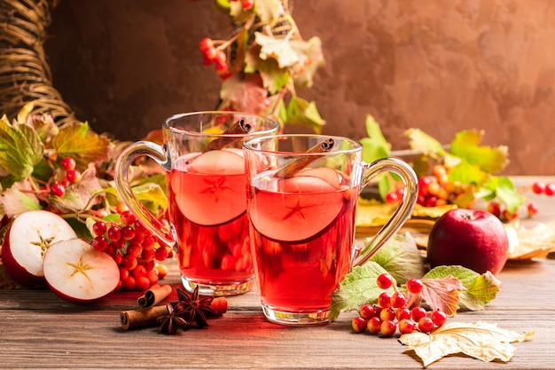 Autumn drink sangria with apple berry and cinnamon.