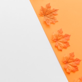 Autumn dry leaves designed inside orange shape