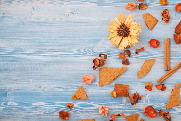 Autumn dry yellow and red flowers on a blue wooden